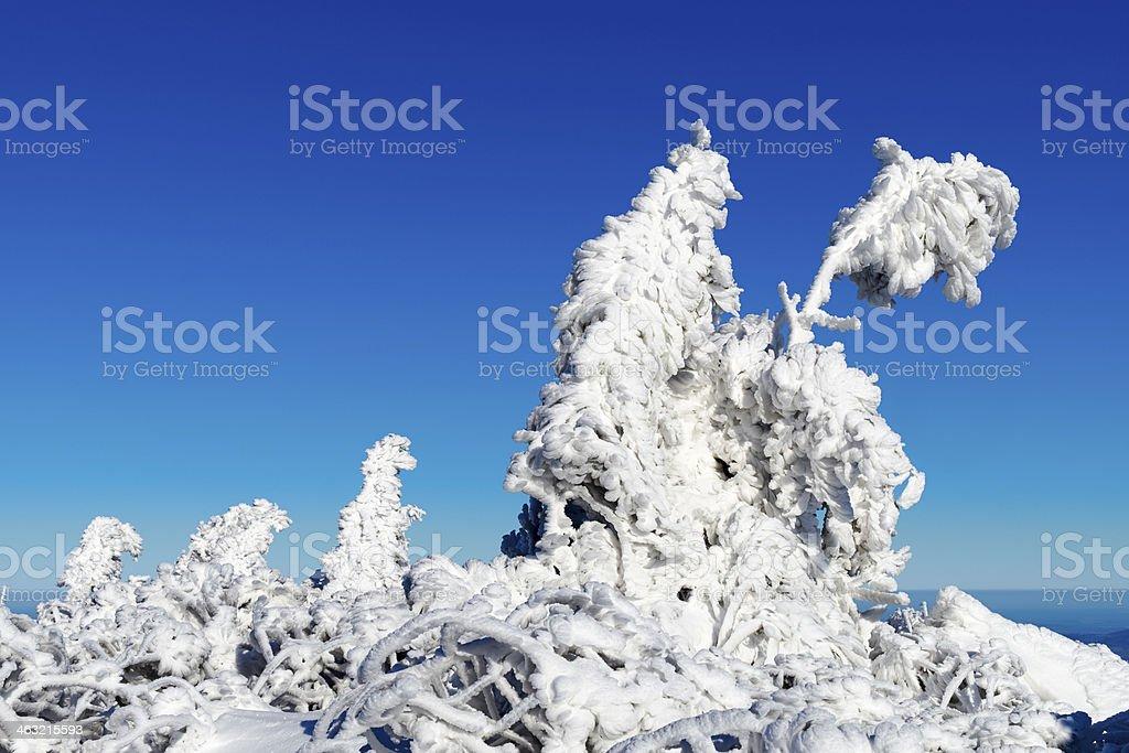 Krkonose, Riesengebirge stock photo
