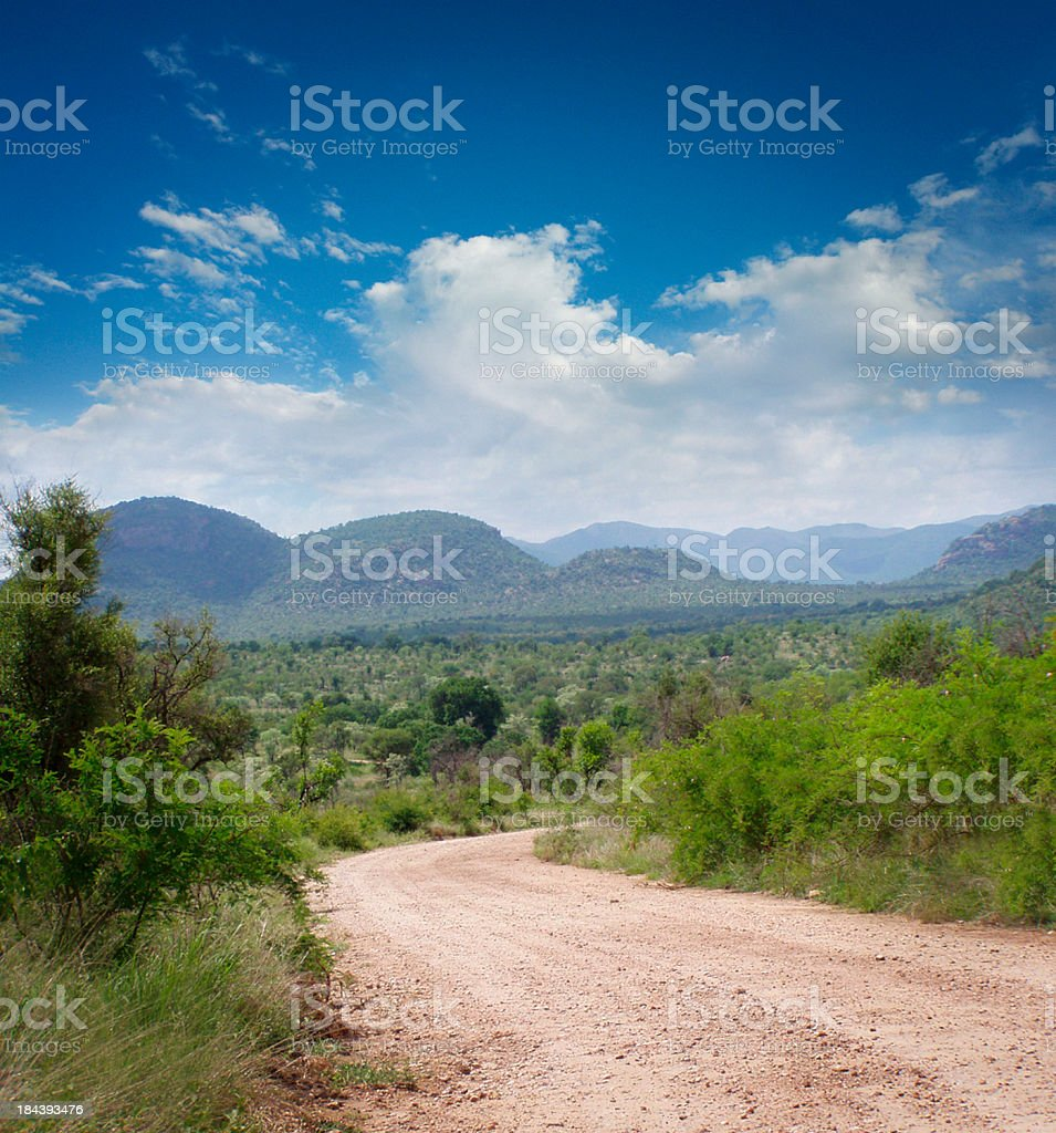 Kruger Park royalty-free stock photo