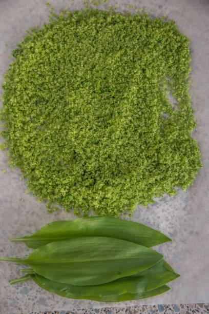 kräutersalz - bärlauchsalz stock-fotos und bilder