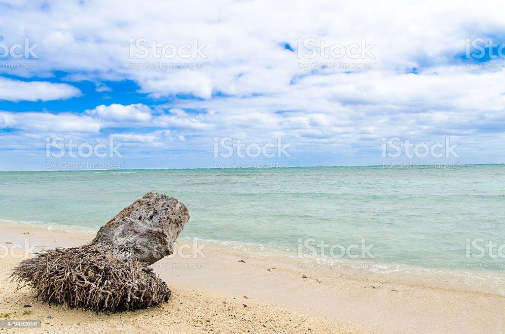 Kualoa Beach stock photo