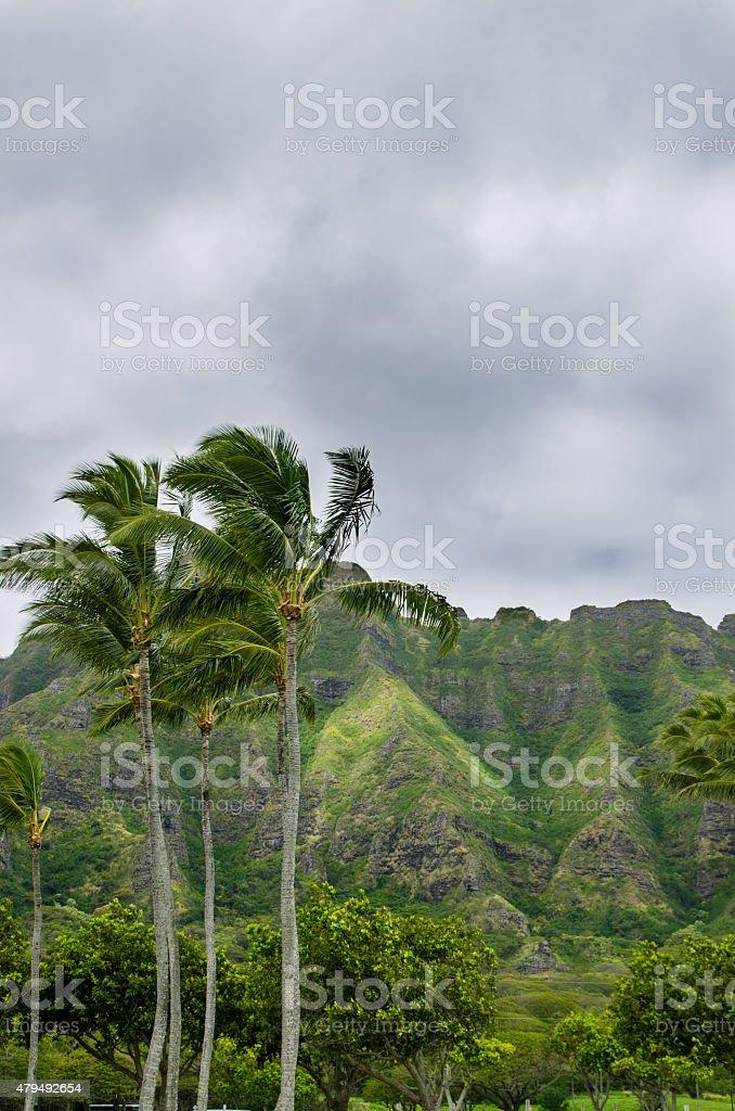 Kualoa of cloudy day stock photo