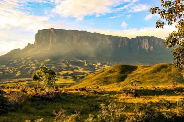 kukenan tepui, venezuela - плато стоковые фото и изображения