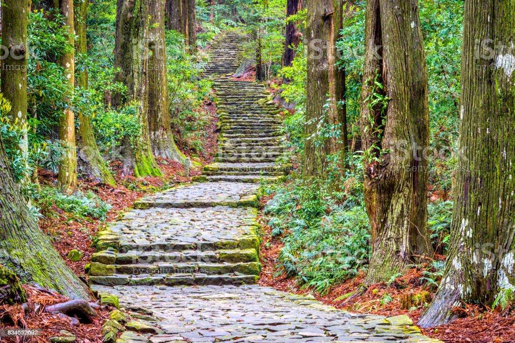 Kumano Kodo stock photo