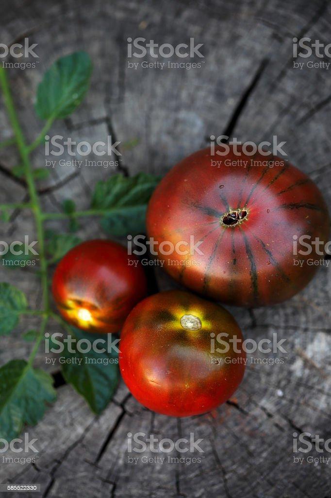 kumato Black tomato stock photo
