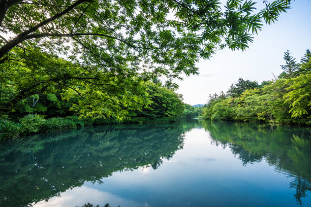 kumobaike (kumoba-teich) in karuizawa - fluss stock-fotos und bilder