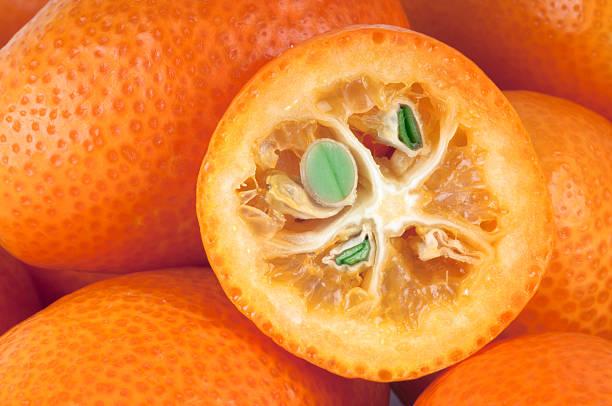 Kumquats stock photo