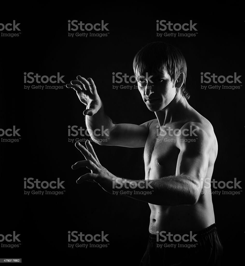 Kung Fu Dragon kata position. stock photo