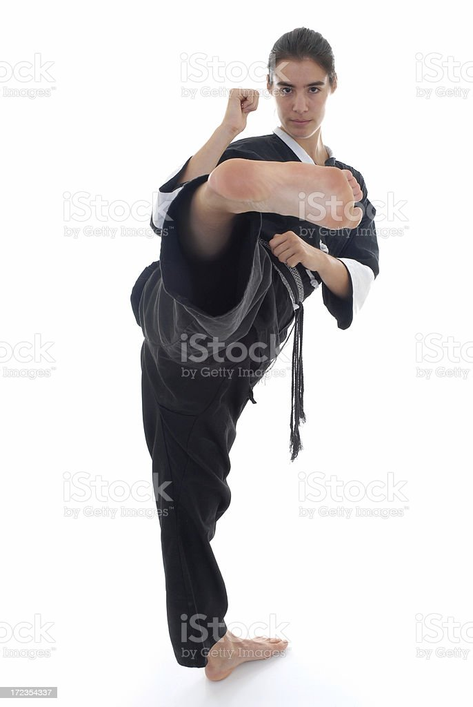 Kung fu fighting royalty-free stock photo