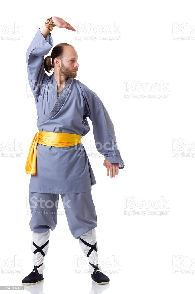 Kung Fu fighting position isolated on white royalty-free stock photo