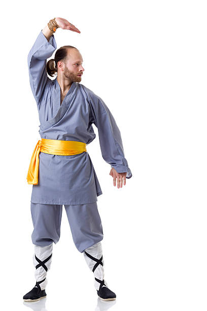 Royalty free adult kung fu martial arts greeting pictures images greeting of martial arts stock photo kung fu fighting position isolated on white stock photo m4hsunfo