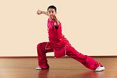 Kung Fu, Changquan, Gongbu ce tuizhang, Long Fist Style, Young man practicing martial arts