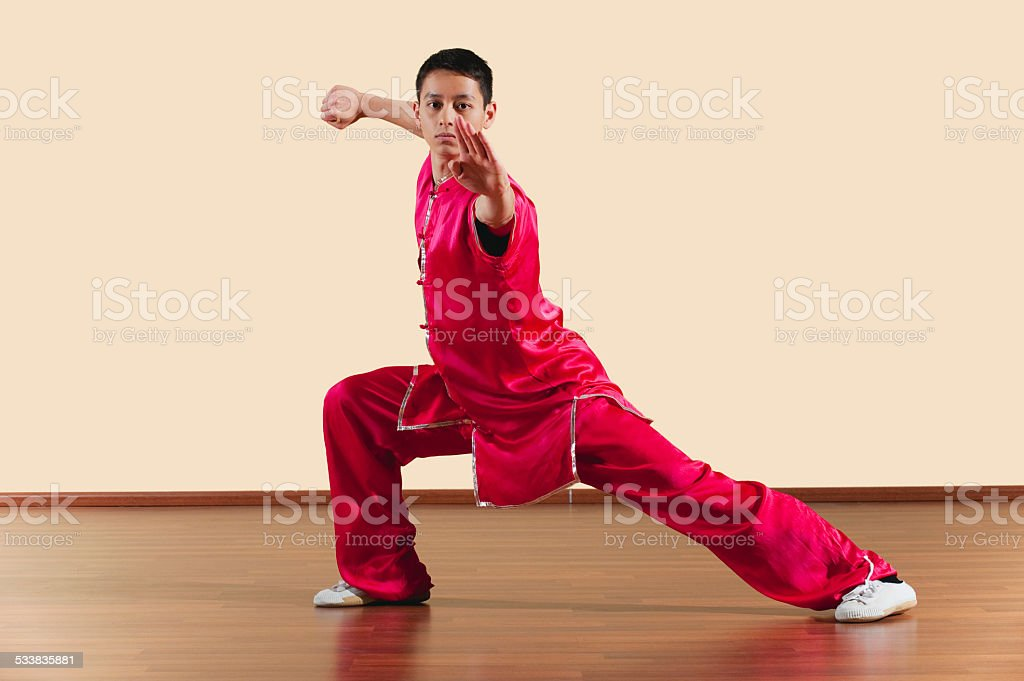 Kung Fu, Long Fist Style, Young man practicing martial arts stock photo