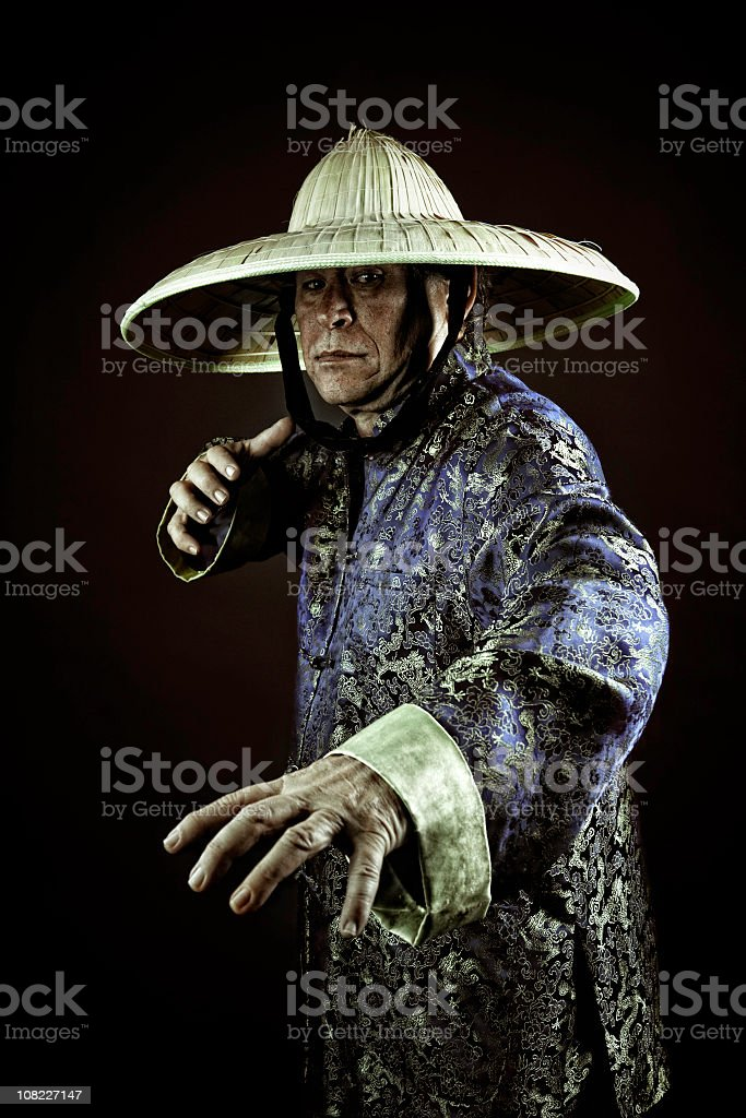 kung fu royalty-free stock photo
