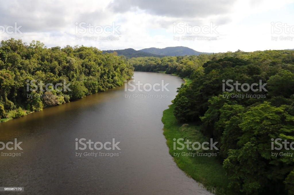 Куранда тропический тропический лес - Стоковые фото Австралия - Австралазия роялти-фри