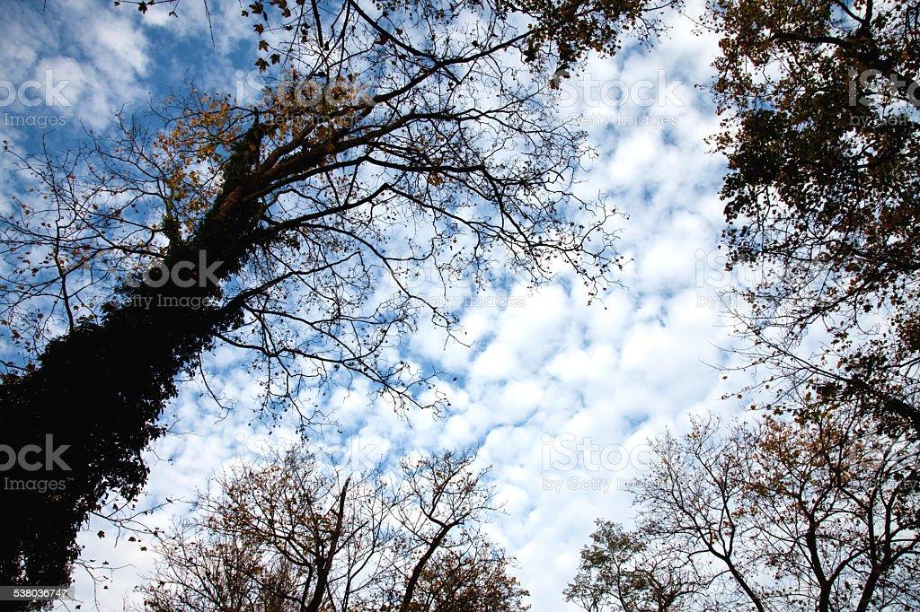 Kutna Hora Magic skies stock photo