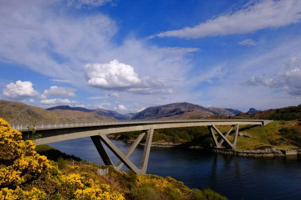 Kylesku Bridge, gorse and Loch Glendhu The Kylesku Bridge on the North Coast 500 crossing the narrows on Loch Glendhu north coast 500 stock pictures, royalty-free photos & images