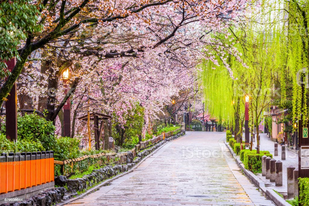 Kyoto in Spring stock photo