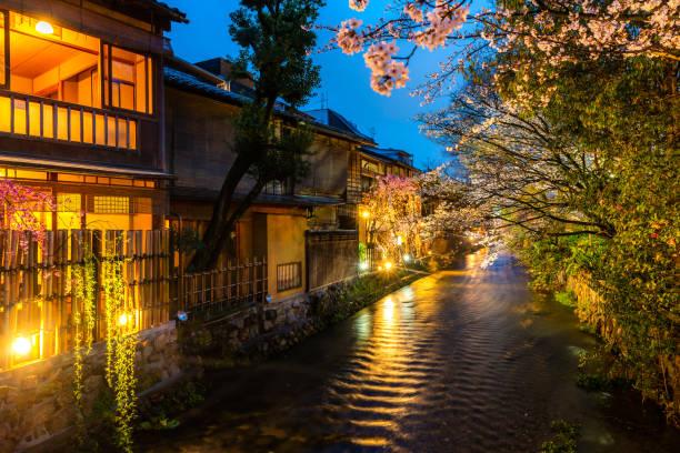 Kyoto, Japan am Shirakawa River im Gion District im Frühjahr. Kirsch-Blosson-Saison in Kyoto, Japan. – Foto