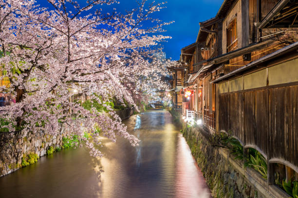 Kyoto, Japan am Fluss Shirakawa im Stadtteil Gion in Kyoto während der Frühjahrssaison Cherry blossom. – Foto