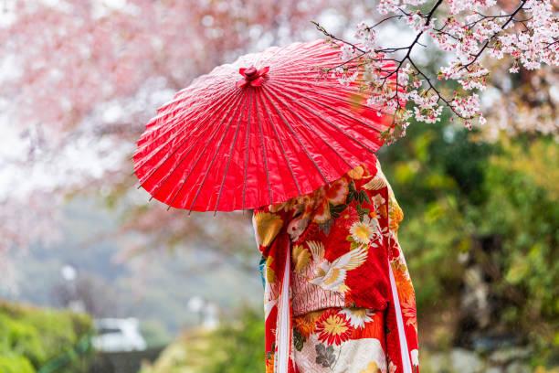 kyoto, japon arbres de sakura de fleur de cerise au printemps avec des fleurs fleurisssantes dans le parc de jardin par la rivière et la femme dans le kimono rouge et le parapluie - couleur des végétaux photos et images de collection