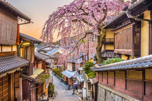 Image result for free photos kyoto