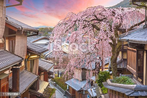 Kyoto, Japan in the Higashiyama district at dawn with cherry blossoms in the springtime.