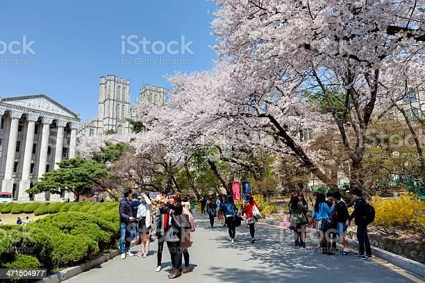 Kyung hee university seoul campus south korea picture id471504977?b=1&k=6&m=471504977&s=612x612&h=up2fretmrha3ozjkg5v5ywym78wxvq3k5zo7gmm9 ok=