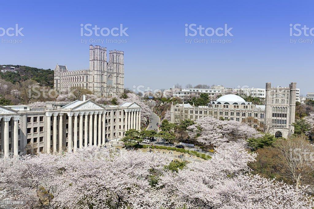 Kyung Hee University, Seoul, Korea royalty-free stock photo