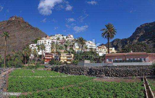 istock La Calera in Valle Gran Rey on the island of La Gomera 1217663027