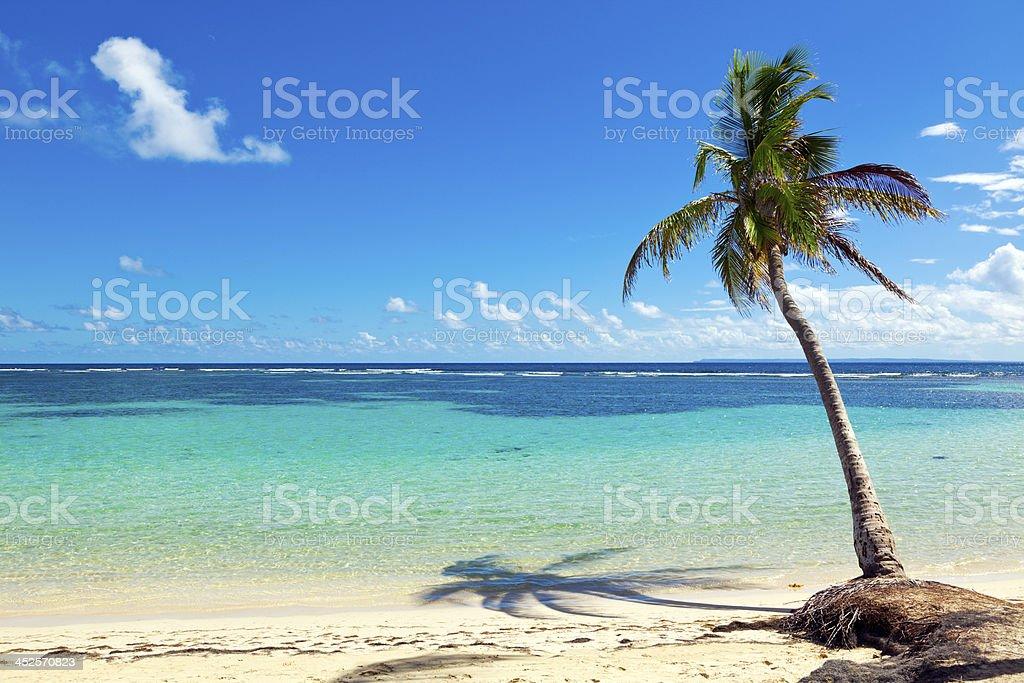 La Caravelle caribbean sea beach, Guadeloupe island stock photo