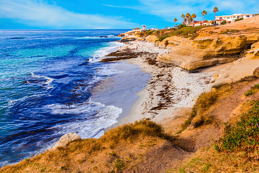 La Jolla coastline in Southern California,San Diego (P)