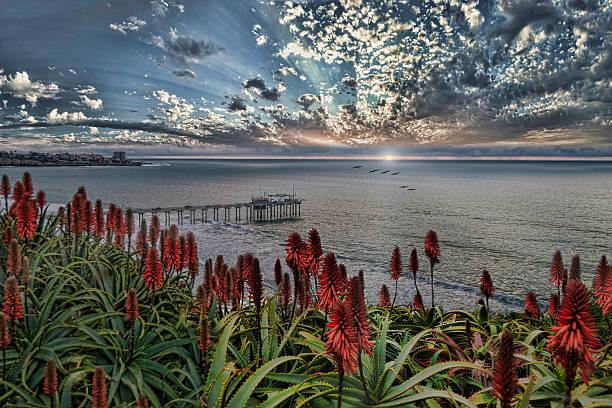 La Jolla sunset stock photo