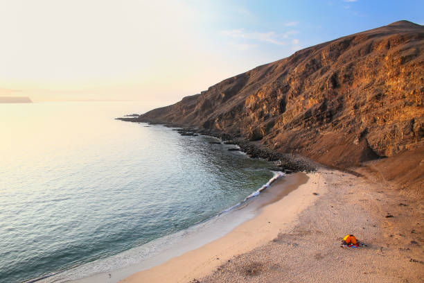 La Mina Beach in Paracas National Reserve, Peru. La Mina Beach during early morning in Paracas National Reserve, Peru. Main purpose of the Reserve is to protect marine ecosystem and historical cultural heritage. pisco peru stock pictures, royalty-free photos & images