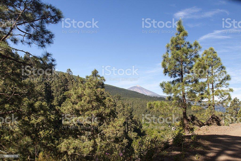La Orotava Valley royalty-free stock photo