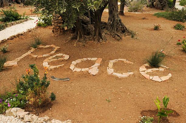 La paix dans le jardin de Gethsémani – Foto