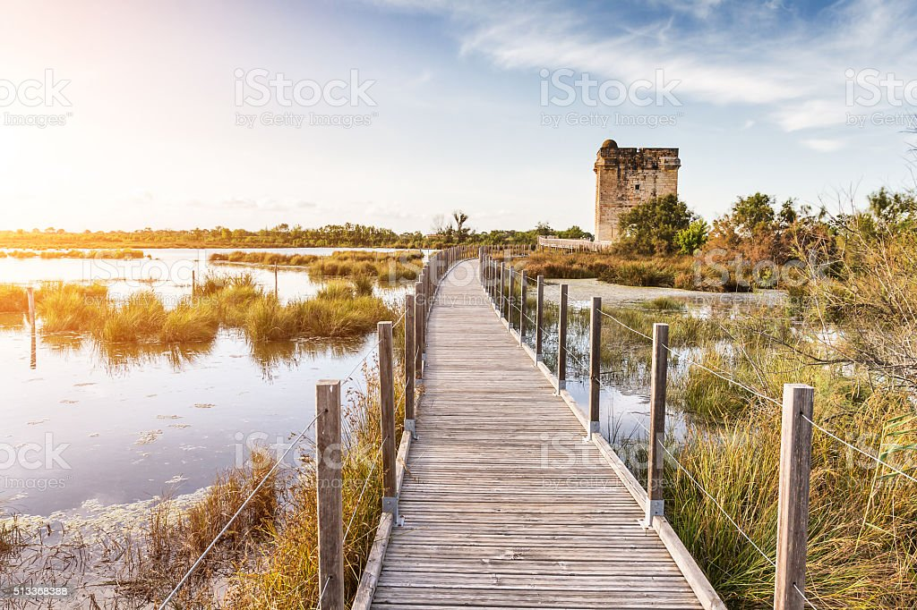 La Tour Carbonnière - Camargue - France stock photo