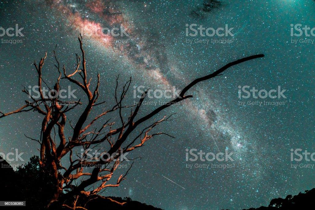 La voie lactée dans l'hémisphère sud - Royalty-free Astronomy Stock Photo