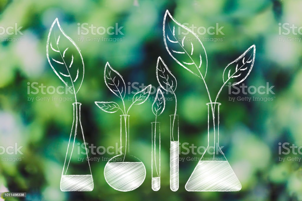 lab bottles with leaves growing out of them instead of chemical solutions stock photo