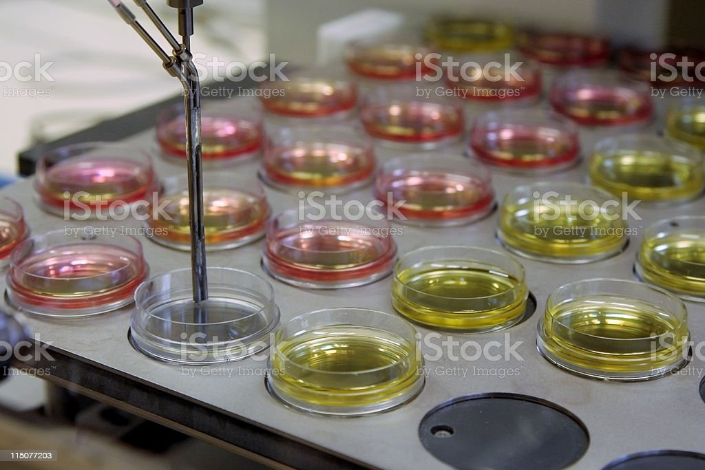 Lab equipment for dna research royalty-free stock photo