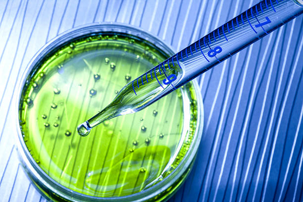 lab research microbiology - microbiology stock photos and pictures