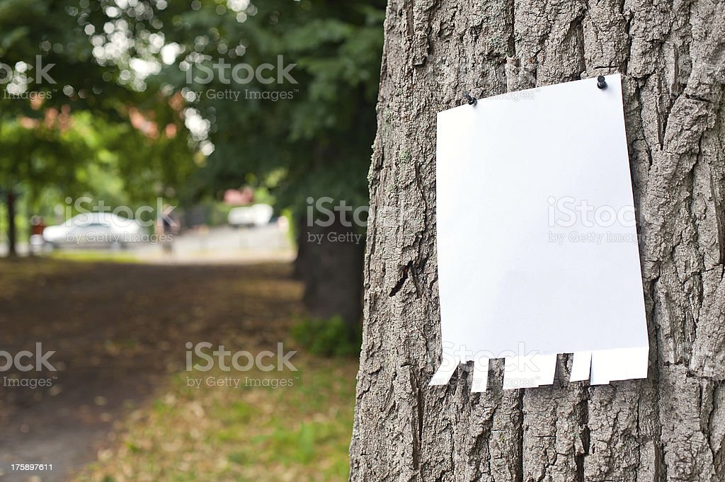 label on tree stock photo