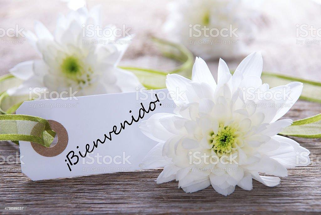 Label with Bienvenido stock photo