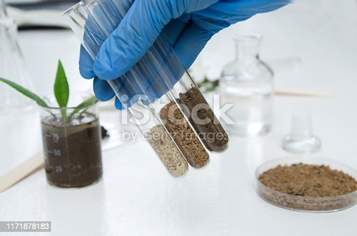 istock Laboratory assistant holding glass tubes of sand, black soil and clay befor testing them 1171878183