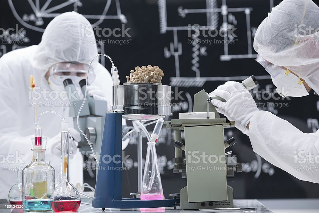 laboratory chemical research royalty-free stock photo