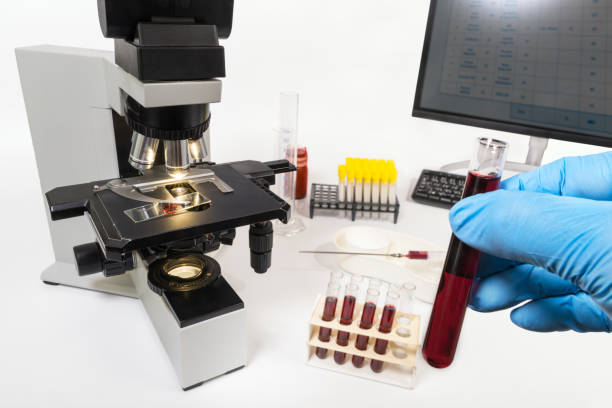 Laboratory diagnostic department. Optical microscope and hand in blue glove holding tube sample stock photo