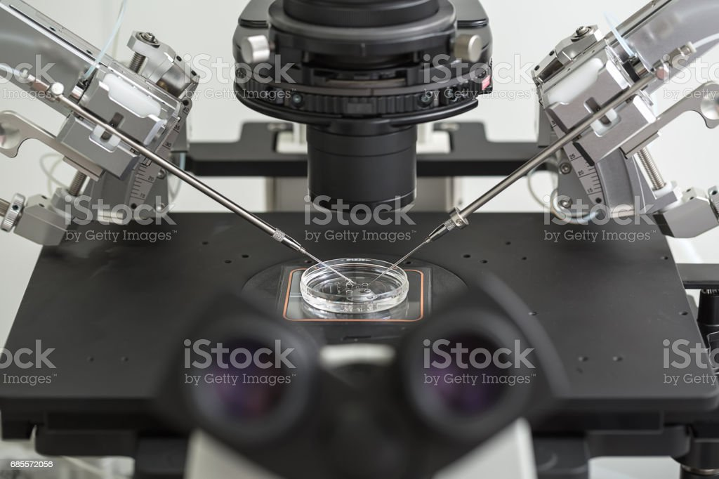 Laboratory fertilization in IVF microscope stock photo
