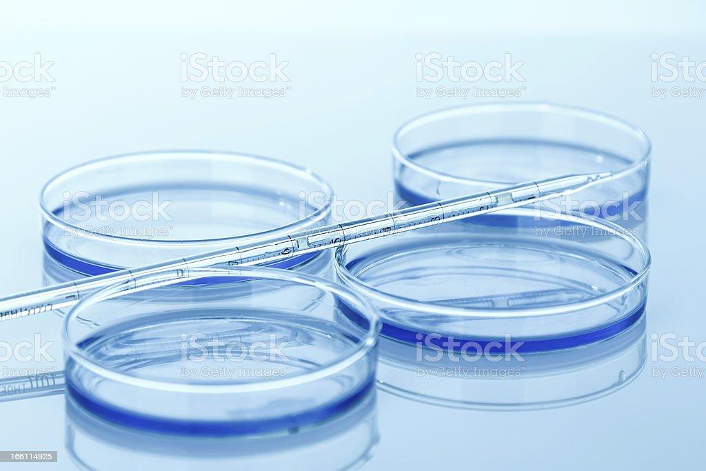 Laboratory glassware equipment, royalty-free stock photo
