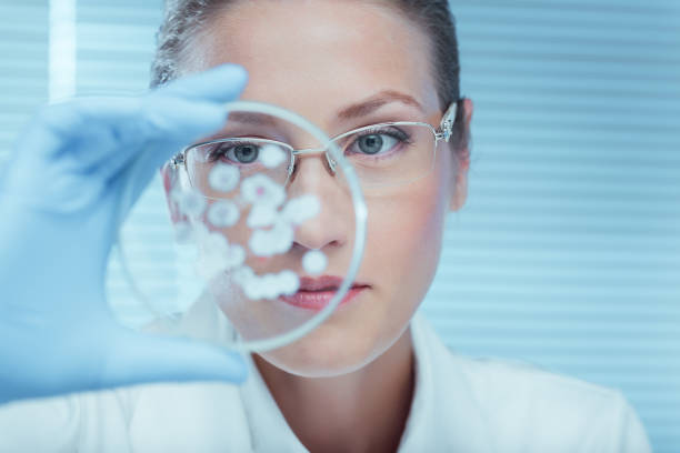 laboratory - biotechnology stock pictures, royalty-free photos & images