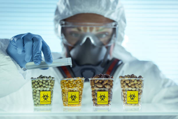 laboratory - genetic modification stock photos and pictures