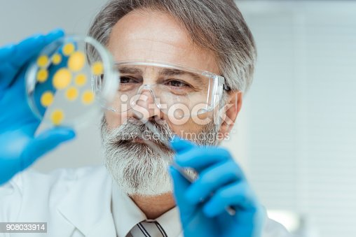 istock Laboratory 908033914